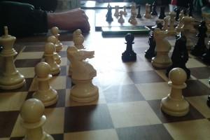 torneo de ajedrez (5)