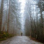 Ciclo de Halloween / Cuentos de terror: La ruta